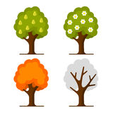 Pear Tree Set on White Background. Vector Stock Images