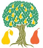 Pear tree. Vector illustration (EPS 10 Stock Photo