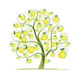 Pear tree for your design Stock Photo