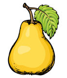 Pear. Vector drawing Royalty Free Stock Photo