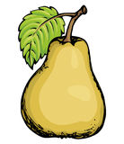 Pear. Vector drawing Stock Images