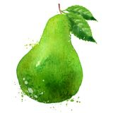 PEAR vector logo design template. fruit or food Stock Image
