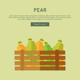 Pear Vector Web Banner in Flat Style Design. Royalty Free Stock Photo