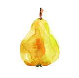 Pear, watercolor illustration on white background Royalty Free Stock Image