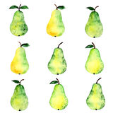 Pear watercolor pattern Stock Image