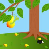 Pear and worm. Illustration  color wormy pear and worm Stock Images