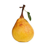 Pear. Yellow pear isolated on white background Royalty Free Stock Photo