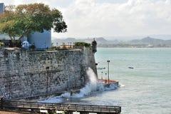 Pearce en Puerto Rico Foto de archivo libre de regalías
