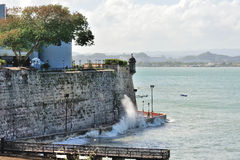 Pearce in Puerto Rico Lizenzfreies Stockfoto