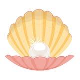 pearl в иллюстрации раковины изолированной на белой предпосылке Стоковое Фото