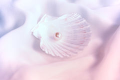 Pearl. Shell with pearl on soft silk Royalty Free Stock Photography