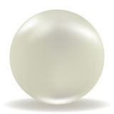 Pearl Stock Photo
