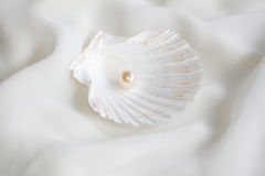 Pearl Royalty Free Stock Photo