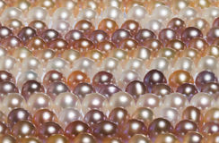 Pearl background stock images