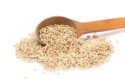 Free Pearl Barley Stock Image - 53942421