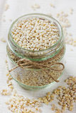 Pearl barley in a bowl Royalty Free Stock Image