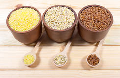 Pearl barley, buckwheat, millet groats Royalty Free Stock Photos