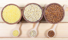 Pearl barley, buckwheat, millet groats Stock Photos