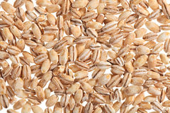 Pearl barley food ingredient background Royalty Free Stock Photography