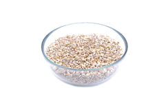 Pearl barley in glass jar macro close up Royalty Free Stock Photo