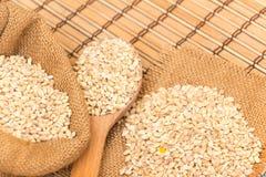 Pearl barley Royalty Free Stock Photography