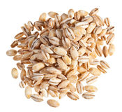 Pearl barley heap Royalty Free Stock Images