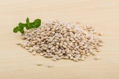 Pearl barley Royalty Free Stock Photos