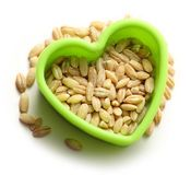 Pearl barley heart form Royalty Free Stock Images