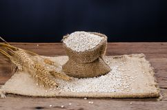 pearl barley in sack bag Stock Image