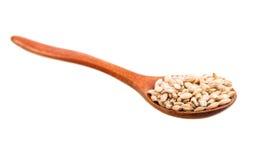 pearl barley Royalty Free Stock Images