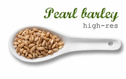 Pearl barley in white porcelain spoon Stock Photography