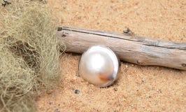 Pearl on beach Royalty Free Stock Photos