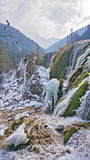 Pearl Beach Waterfall Jiuzhaigou winter ice Stock Photo