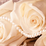 Pearl beads and cream rose Stock Photography