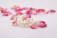 Pearl beads and red roses petals Royalty Free Stock Images