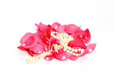 Pearl beads among rose petals Royalty Free Stock Image