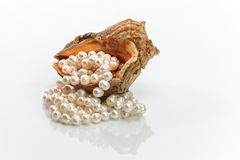 Pearl beads in the sink. On a white background Stock Photography