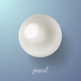 Pearl on blue background. Vector illustration of shiny natural white sea pearl with light effects on blue background. Caption pearl vector illustration