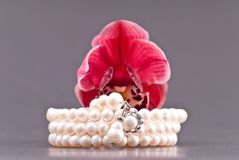 Pearl Bracelet Royalty Free Stock Photography