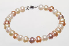 Pearl Bracelet royalty free stock image