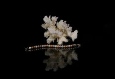 Pearl bracelet with coral. On a black background Royalty Free Stock Image