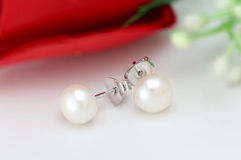Pearl Earring on blur background Stock Images