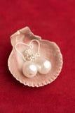 Pearl earrings Stock Image