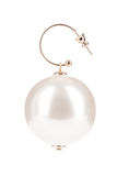Pearl earrings. Isolated on white background Royalty Free Stock Image