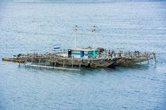 Pearl farm, floating on Pacific Ocean, Indonesia stock photography