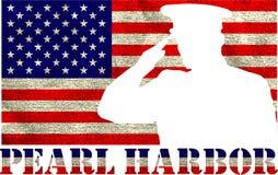 Pearl Harbor Giorno di ricordo Fotografie Stock
