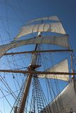 Pearl of India. Sailboat Pearl of India. San Diego, Ca. Canon 20D Royalty Free Stock Photo