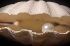 Pearl Inside royalty free stock photography