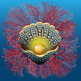 Pearl mussel and coral. On a deep blue background Royalty Free Stock Photography
