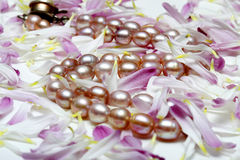 Pearl necklace stock image